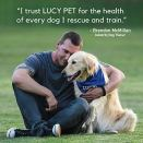 Lucy-Pet-Formulas-for-Life-Sensitive-Stomach-Skin-Dry-Dog-Food-All-Breeds-Life-Stages-Salmon-Pumpkin-Quinoa