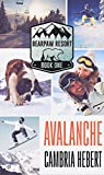 Avalanche (BearPaw Resort Book 1)