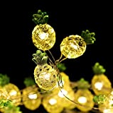 Mikash Pineapple Lights,13.5ft Battery Operated 40pcs Warm White LED Pineapple Lights for Wedding, Party, Bedroom, Birthday and Holiday Tion | | Model WDDNG - 944