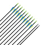 CQ Archery Recurve Bow Arrows Practice and Target Fiberglass Arrows for Beginners or Kids Youth Arrows for Bow-30 inch(12 PCS)
