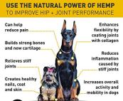 Mix-Rx-Organic-Calming-Dog-Treats-for-Separation-Anxiety-Pain-Relief-Natural-Hemp-Oil-Stress-Sleep-Aid-2-Pack-1000mg-Hemp-Oil-for-Pets
