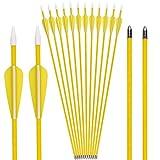 Elong Fiberglass Arrows Archery 26 Inch Yellow ShootingTargeting Recurvebow for Youth Kids Children Beginner Safe Point(12pcs)