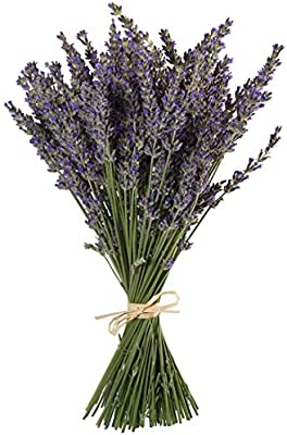 """TooGet Natural Lavender Bundles, Freshly Harvested 100 Stems Dried Lavender Bunch 16"""" - 18"""" Long, Decorative Flowers Bouquet for Home Decor, Crafts, Gift, Wedding or Any Occasion"""