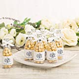 Wilton Champagne Bottle Wedding and New Year's Party Favor Containers, 24pc, 4' H