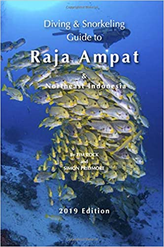raja ampat travel guide