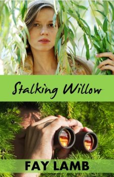 Stalking Willow (Amazing Grace Book 1) by [Lamb, Fay]