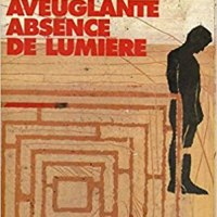 review CETTE AVEUGLANTE ABSENCE DE LUMIERE