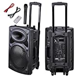 AW Portable 120W Active PA Speaker Mic Guitar AMP Bluetooth USB SD LCD FM Remote w/Wireless Microphone