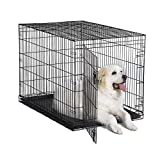 New World 48' Folding Metal Dog Crate, Includes Leak-Proof Plastic Tray; Dog Crate Measures 48L x 30W x 33H Inches, Fits XL Dog Breeds