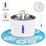Cat Water Fountain Stainless Steel, Intelligent Auto Power Off Pump, Pet Fountain, Cat Water Dispenser with 3 Carbon Filters, 1 Mat and 2 Cleaning Brushes, Water Level Window with LED Light 81oz / 2.4