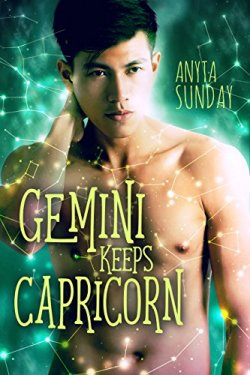 Gemini Keeps Capricorn (Signs of Love Book 3)