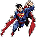 Fan Emblems Superman Character Car Decal Domed/Multicolor/Clear, DC Comics Automotive Emblem Sticker Applies Easily to Cars, Trucks, Motorcycles, Laptops, Windows, Almost Anything
