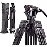 Regetek Professional Video Camera Tripod System Heavy Duty Aluminum Adjustable 65' Tripod Stand with Fluid Pan Head and Carry Bag for for Canon Nikon DV Camcorder DSLR Photo Studio