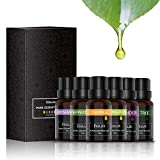 Essential Oils Set, ESSLUX TOP 6 Pure Essential Oils for Diffuser, Aromatherapy and Massage, Premium Quality, Lavender, Tea Tree, Rosemary, Lemongrass, Orange, Peppermint Oil - FDA Approved