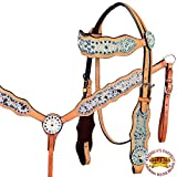 Product review for HILASON WESTERN COWHIDE LEATHER HORSE HEADSTALL BREAST COLLAR TURQUOISE CRYSTAL