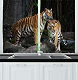 Ambesonne Animal Decor Kitchen Curtains, Tiger Couple in The Jungle on Big Rocks Image Wild Cats in Nature Print, Window Drapes 2 Panels Set for Kitchen Cafe, 55 W X 39 L Inches, Grey and Ginger