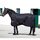 Product review for Rambo Ionic Stable Blanket 66 inch