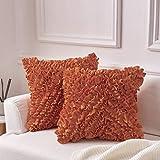MoMA Decorative Throw Pillow Covers (Set of 2) - Pillow Cover Sham Cover - Orange Throw Pillow Cover - Decorative Sofa Throw Pillow Cover - Square Decorative Pillowcase - Orange - 18' x 18'