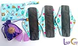 Luna Cup Menstrual Starter Kit - 3 Reusable Bamboo Charcoal Cloth Pads 2 Menstrual Cups 1 Silky Pouch 1 Wet Bag
