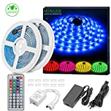 Minger LED Strip Lights Kit, Waterproof 2x5m(32.8ft in Total) 5050 RGB 300led Strips Lighting Flexible Color Changing with 44 Key IR Remote Ideal for Home, Kitchen, DC 12V 4A UL Listed