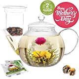 Teabloom Stovetop Safe Glass Teapot with 2 Blooming Teas & Removable Glass Infuser for Loose Leaf Tea – Premium Quality Teapot Gift Set
