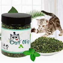 Pet-Toys-Cat-100-Natural-Organic-Premium-Catnip-Catmint-Powder-Training-Toys-Cats-Pet-Product-120-360ml-Toys-Cats-Toys-Ball-Chat-Mint-Powder-Flavor-Catnip-Stick-Face-Foundation-Natural-Ment