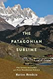 The Patagonian Sublime: The Green Economy and Post-Neoliberal Politics