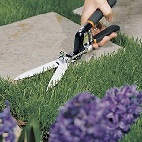 Fiskars Pruning Shears