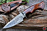 Custom Handmade Hunting Knife Bowie Knife Damascus Steel Survival Knife EDC 10'' Overall Walnut Wood with Sheath
