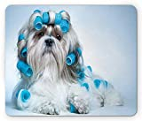 Dog Lover Mouse Pad, Shih Tzu Dog Grooming Hairstyle Salon Front View Closeup Studio Shot, Standard Size Rectangle Non-Slip Rubber Mousepad, Blue Pale Blue White