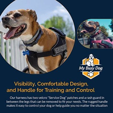 Service-Dog-Vest-Harness-Military-Grade-Assistance-Dog-Harness-with-Removable-Reflective-Patches-Comfortable-Safe-Handle-for-Maximum-Training-Walking-Control-Free-ADA-Card-Download