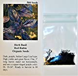 Lulan Herb Basil Red Rubin 100 Organic Seeds