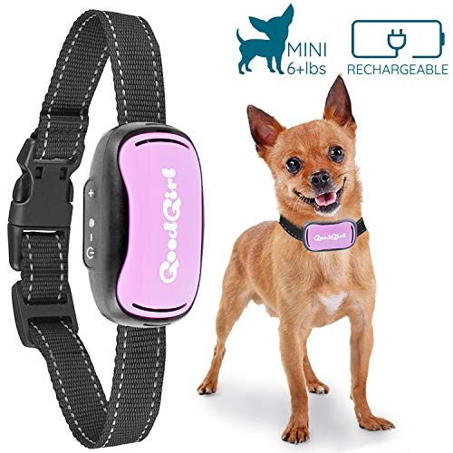 GoodBoy Small Rechargeable Dog Bark Collar for Tiny to Medium Dogs Weatherproof and Vibrating Anti Bark Training Device That is Smallest & Most Safe On Amazon - No Shock No Spiky Prongs! (6+ lbs) 1