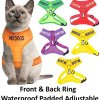 Dexil Luxury Cat Harness Padded and Water Resistant 5