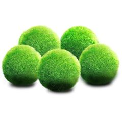 Luffy-6-Nano-Moss-Balls-06-Marimo-for-Community-Fish-Tanks-Absorbs-Nitrates-Provides-Oxygen-in-Aquarium-Needs-Minimal-Care-Perfect-for-Neon-Tetra-Guppies-Playts-Molly