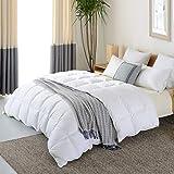 NP Goose Down Alternative Comforter (King 106 x 90 Inch),Ultra Soft Brushed Microfiber, Quilt with Corner Tab for All Season Hypoallergenic Plush Mircofiber Comforter Duvet Insert