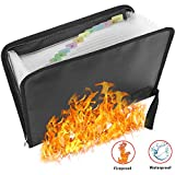 Folder Organizer Fireproof File Folder and Water Resistant with Silicone-Coated Heat Resistant Money Document Bag with A4 Size 12 Pockets Zipper Closure Portable File Organizer Pouch (14.3' x9.8')