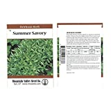 Savory Herb Garden Seeds - Summer Savory - 1 g Packet - Non-GMO, Heirloom, Herbal Gardening & Microgreens Seed
