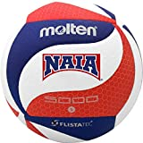 Molten Flistatec NAIA Volleyball