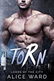 Torn: A Bad Boy Billionaire Romance (Lords of the City Book 1)