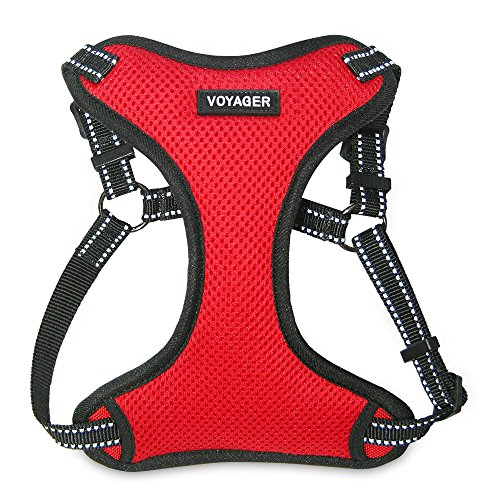 Voyager Step-in Flex Dog Harness - All Weather Mesh, Step in Adjustable Harness for Small and Medium Dogs by Best Pet Supplies - Red, Medium