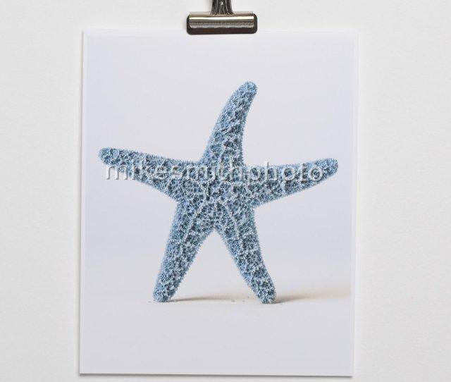 Amazon Com Starfish Art Print Blue Nautical Decor Beach Wall Art
