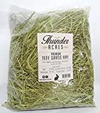 Product review for Premium Teff Grass Hay (3 lbs. )