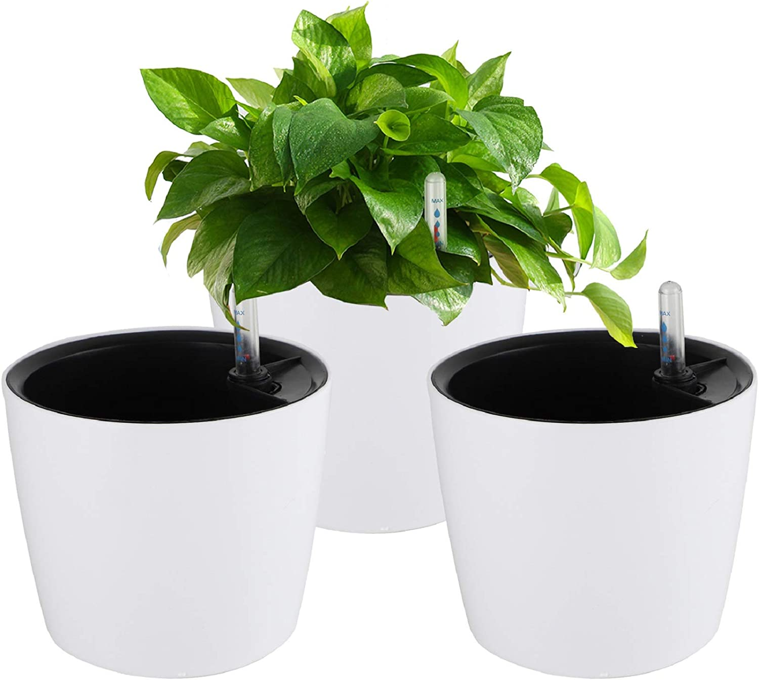 Amazon Com Plastic Planter Flower Pot White Plant Pots Self Watering Planters 7 Inches 3 Pack Plant Containers With Water Level Indicator For House Plants African Violets Succulents Plants Indoor Outdoor Kitchen