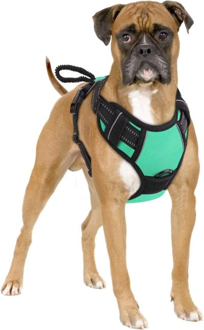 612S7%2B3Xb1L. AC SL1200 Best Harness For Husky – A Throughout Buying Guide With Recommendations