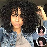 MERISIHAIR Curly Afro Wigs for Black Women Synthetic Heat Resistant Jet Black Short Curly Full Wigs for Black Women (Natural Black)