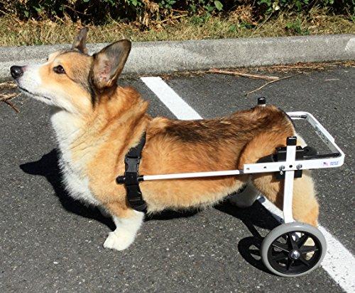 K9 Carts Rear Support Wheelchair - Medium - White