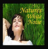 Natures White Noise