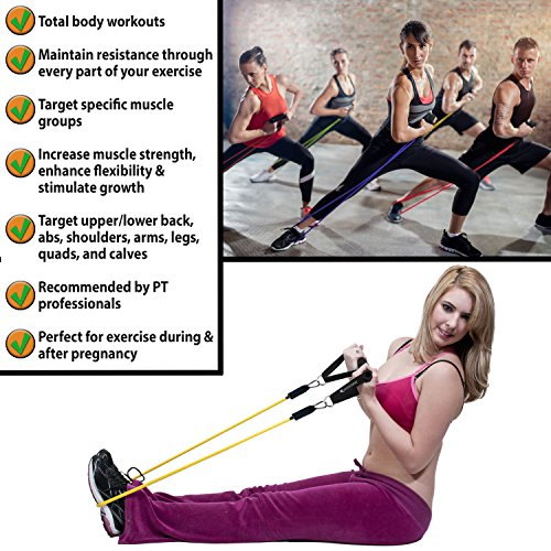 SmarterLife-Resistance-Bands-for-Legs-and-Butt-Heavy-Duty-Exercise-Bands-with-Handles-Door-Anchor-Ankle-Straps-Up-to-75-Lbs-Physical-Therapy-Bands-Stretch-Bands-for-Arms-Shoulders-Home-Gym