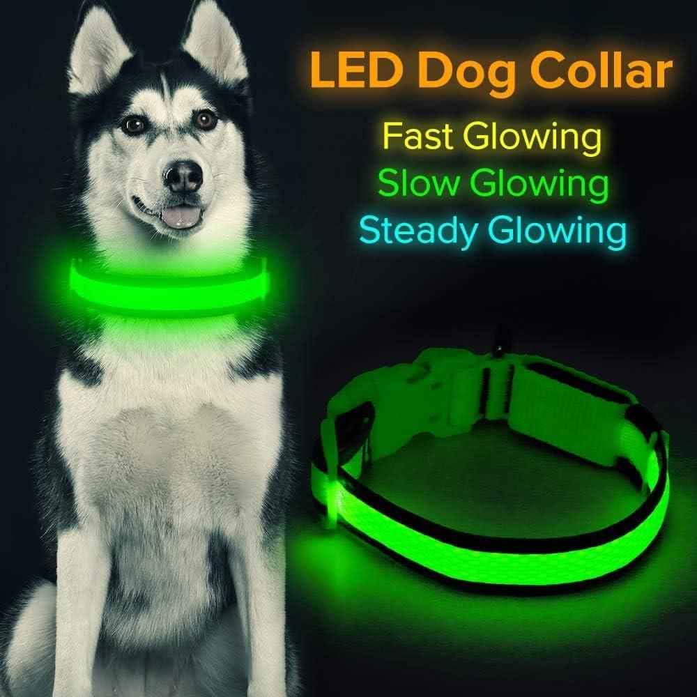Collar de perro LED Micro USB recargable con luz que brilla intensamente, cómodo y suave malla de seguridad para perros pequeños, medianos y grandes (L, verde)